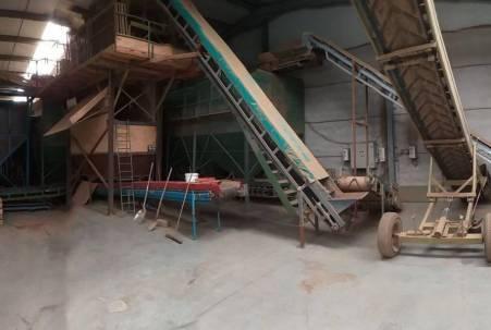 Voorraadbunkers met sorteerder en transportbanden.